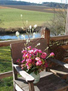 Schnittstauden. Bitte bedienen Sie sich auch unseres reich bebilderten Web-Shops und bestellen Sie ganz bequem von zu Hause aus unsere wunderbaren Pflanzen in bester kontrolliert biologischer Qualität.